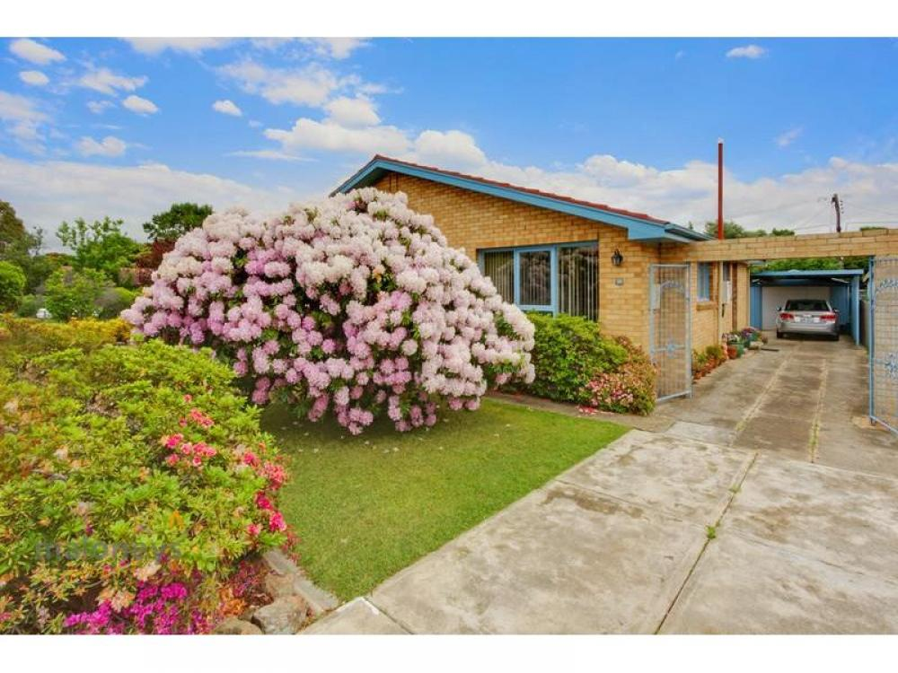 Spacious Family Living in the Inner North awaits